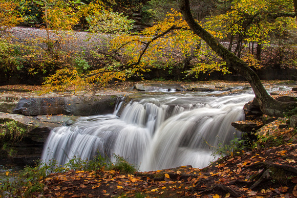 Dunloup Creek Falls 2