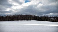 Preston Co Snowy Landscape